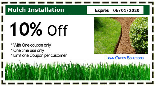 Green solution coupons